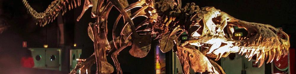dinopolis-javalambre-valdelinares